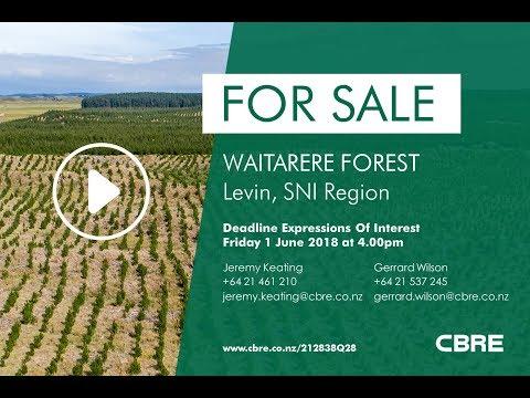 CBRE Agribusiness – Waitarere Forest Sale – Levin, SNI Region, New Zealand