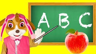 Learn Colors with Paw Patrol Skye Classroom Teaching with Paw Patrol Pups, Trolls and Boss Baby