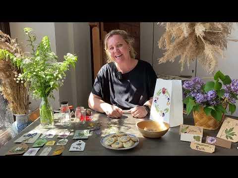 Skapa av pressade växter med Nordiska museets ateljé