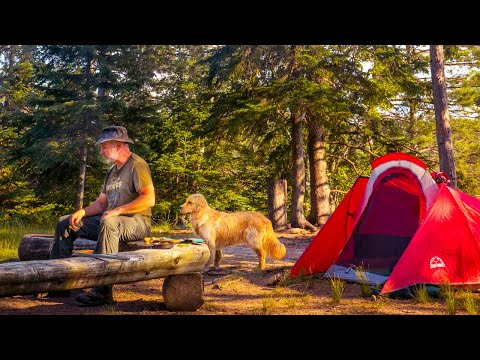 Cali's Camping Trip | Camp and Canoe Alone with My Dog