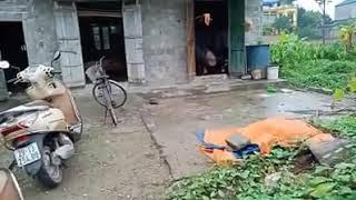 Hoàn cảnh em nhỏ mồ côi me. chăm cha ung thư tại Ứng Hòa, Hà Nội