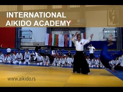Internacionalna aikido akademija - Veče borilačkih veština u Beogradu 2017