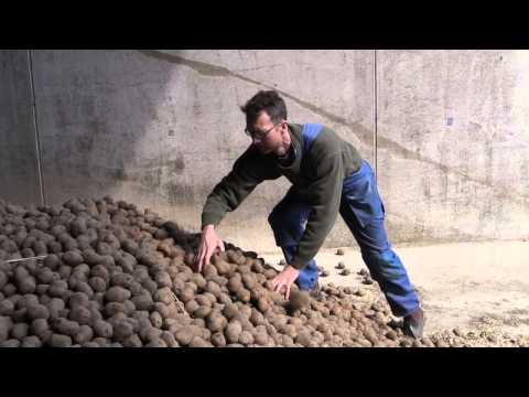 Per-Johan Påhlstorp - Estrellas ekologiska potatisodlare