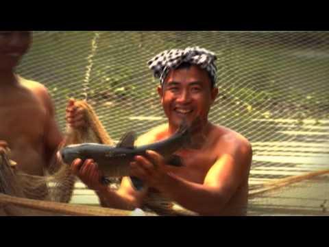 Ca khúc Agribank: Hành khúc trên đường đổi mới