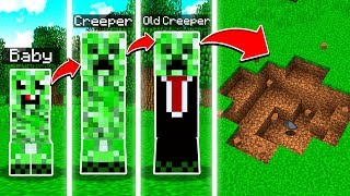 THE LIFE OF A MINECRAFT MOB!