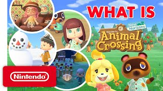 What Is Animal Crossing: New Horizons? A Guide for the Uninitiated
