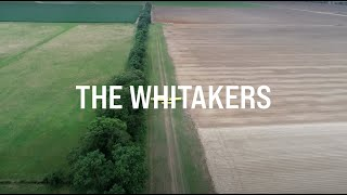 The Whitakers