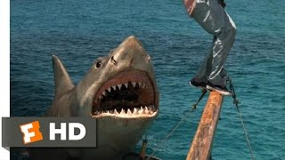Jaws: The Revenge (7/8) Movie CLIP - The Beast Comes Back (1987) HD