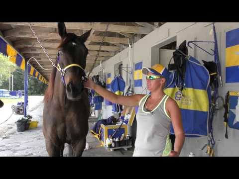 Tack to Track presented by Jacks - Soaking Feet