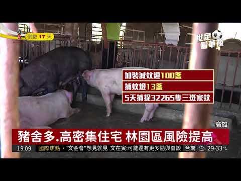 高雄爆疫情 疑日本腦炎本土第2例| 華視新聞 20180528