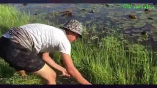 Đặt Bẫy Bắt Cá Hồ Sen Tuyệt Đỉnh Cắm Câu Đỉnh Cao
