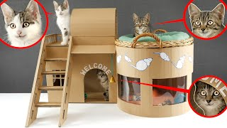How to make Amazing Kitten Cat Pet House from Cardboard
