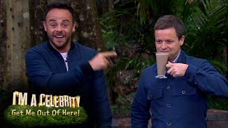 Ant and Dec's Favourite Drinking Bushtucker Trial Moments   I'm A Celebrity...Get Me Out Of Here!