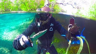 Searching for Treasure in Alligator Infested Water!! (Dangerous)