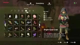 Dubious Food in Legend of Zelda- Breath of the Wild