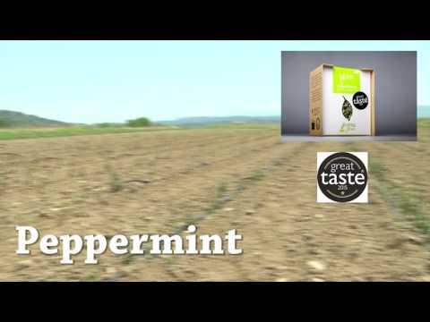 Aroma Farms- Βιολογικά βότανα εκλεπτισμένης ποιότητας...