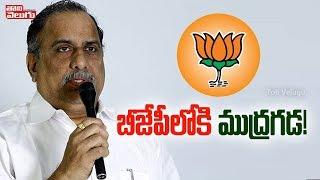 Kapu leader Mudragada Padmanabham to join BJP?..