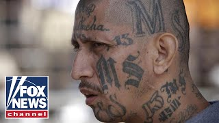 Is an immigration loophole letting MS-13 members go free?