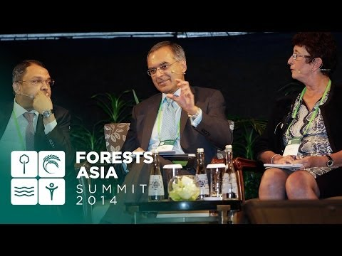Forests Asia 2014 – Day 1 Discussion forum, Seeing Green in REDD