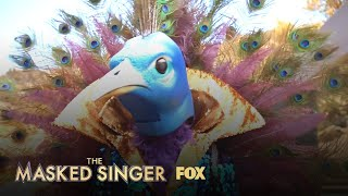 The Clues: Peacock | Season 1 Ep. 1 | THE MASKED SINGER