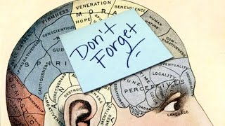 10 Reasons Not to Trust Your Memory