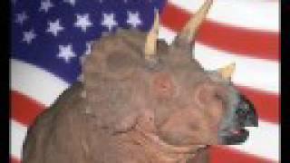 Hard 'n Phirm - American Dinosaurs