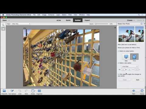 Resizing a photo | Learning Photoshop Elements 15 | Lynda.com from LinkedIn