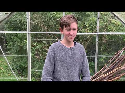 Vincents Trädgård Del 4