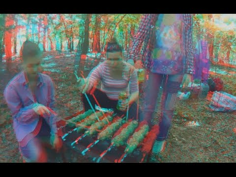 Family PICNIC in 3D ! I wish You Positivity and Love ! 3D VIDEO