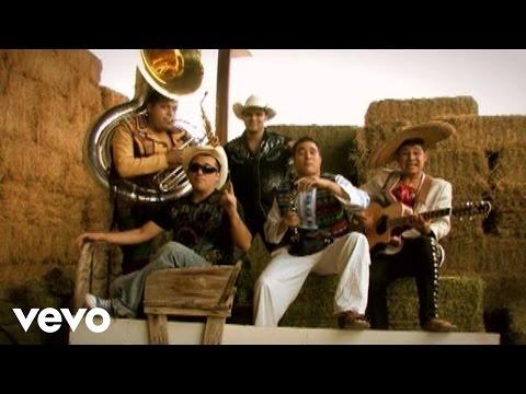 Los Pikadientes de Caborca - Al Gusto (Video (Album Version))