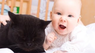 Funny Babies Laughing Hysterically at Cats Compilation (2018)