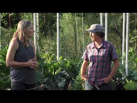 Adventures in High Performance Gardening | Week 22