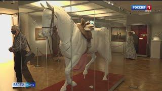 «В сбруе лёгкой и красивой…»: в центре Эрмитаж Сибирь открылась уникальная выставка