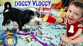 IT'S OREO! FUNnel V Fam Doggy Vloggy! Who's Harder to Handle, Puppy or Baby After Christmas Vlo