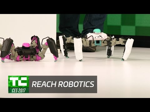 Test Drive with Reach Robotics