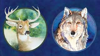 How to Work With Spirit Animals: What It Means When Very Different Animals Show Up