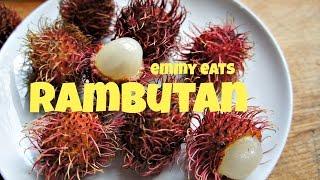 Tasting Rambutan - the hairy fruit