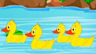 Five Little Ducks | Ingrid Surprise Nursery Rhymes & Kids Songs