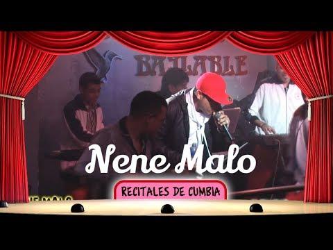 Nene Malo 2015 Show en vivo