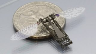 TOP 10 Amazing Micro-Robots