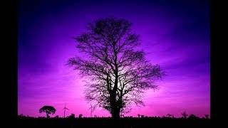 LET GO & Sleep Safe ➤ 432Hz Sleep Music | Healing Sleep Patterns | 432Hz Miracle Music Deep Sleep