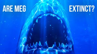 What If Megalodon Still Existed?