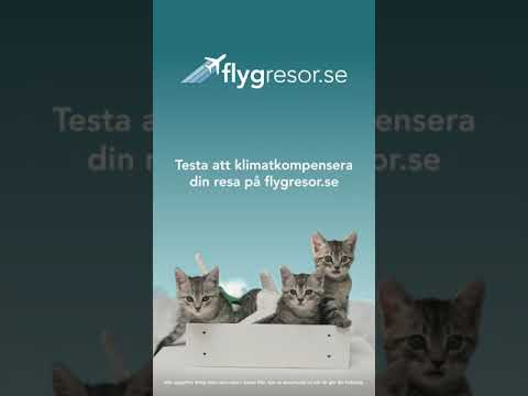 Instruktionsfilm - Klimatkompensation i app