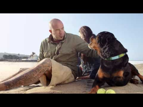 Blue Buffalo Foundation | Pet Cancer Awareness 2016