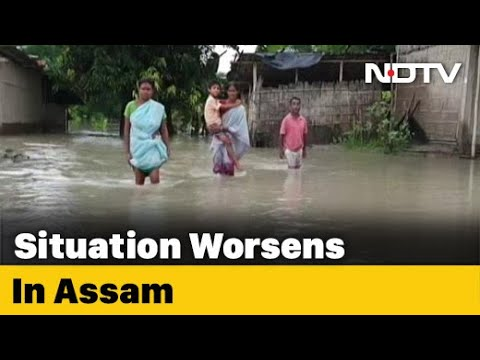 Flood Water Breaching Embankments In Assam, Endangering Crops
