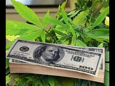 Make Money with Marijuana Stocks // Cannabis Stocks, Weed Stocks Pot Stocks Medical Marijuana Stocks