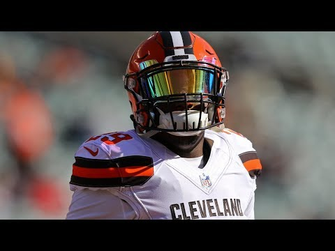 Duke Johnson Jr || Yes Indeed || Official Highlights