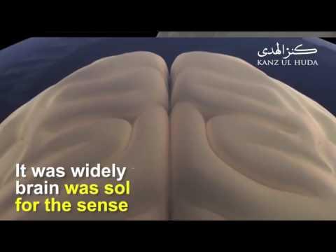 Prophet Muhammad's ﷺ Knowledge of Modern Science