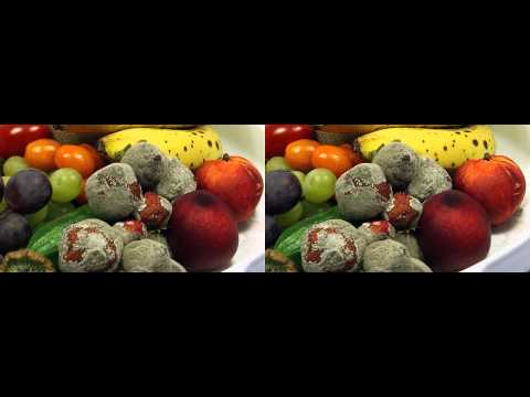Rotting Fruits decay Time Lapse 3D Full HD slow version