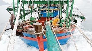 Quá Vật Vã Ngư Dân Bỏ Biển Chạy Tàu Về Quê